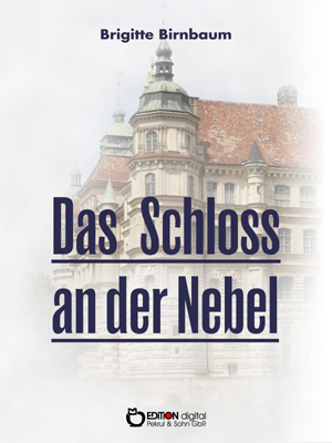 Das Schloss an der Nebel. Historische Erzählungen über das Güstrower Schloss von Brigitte Birnbaum