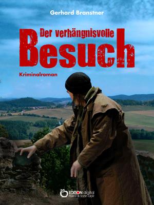 Der verhängnisvolle Besuch. Kriminalroman von Gerhard Branstner