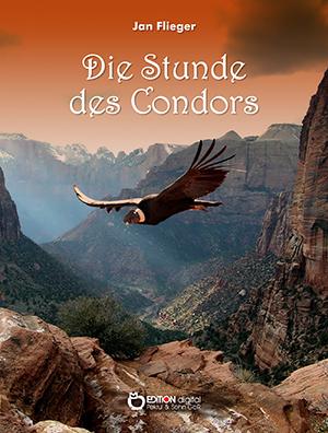 Die Stunde des Kondors von Jan Flieger