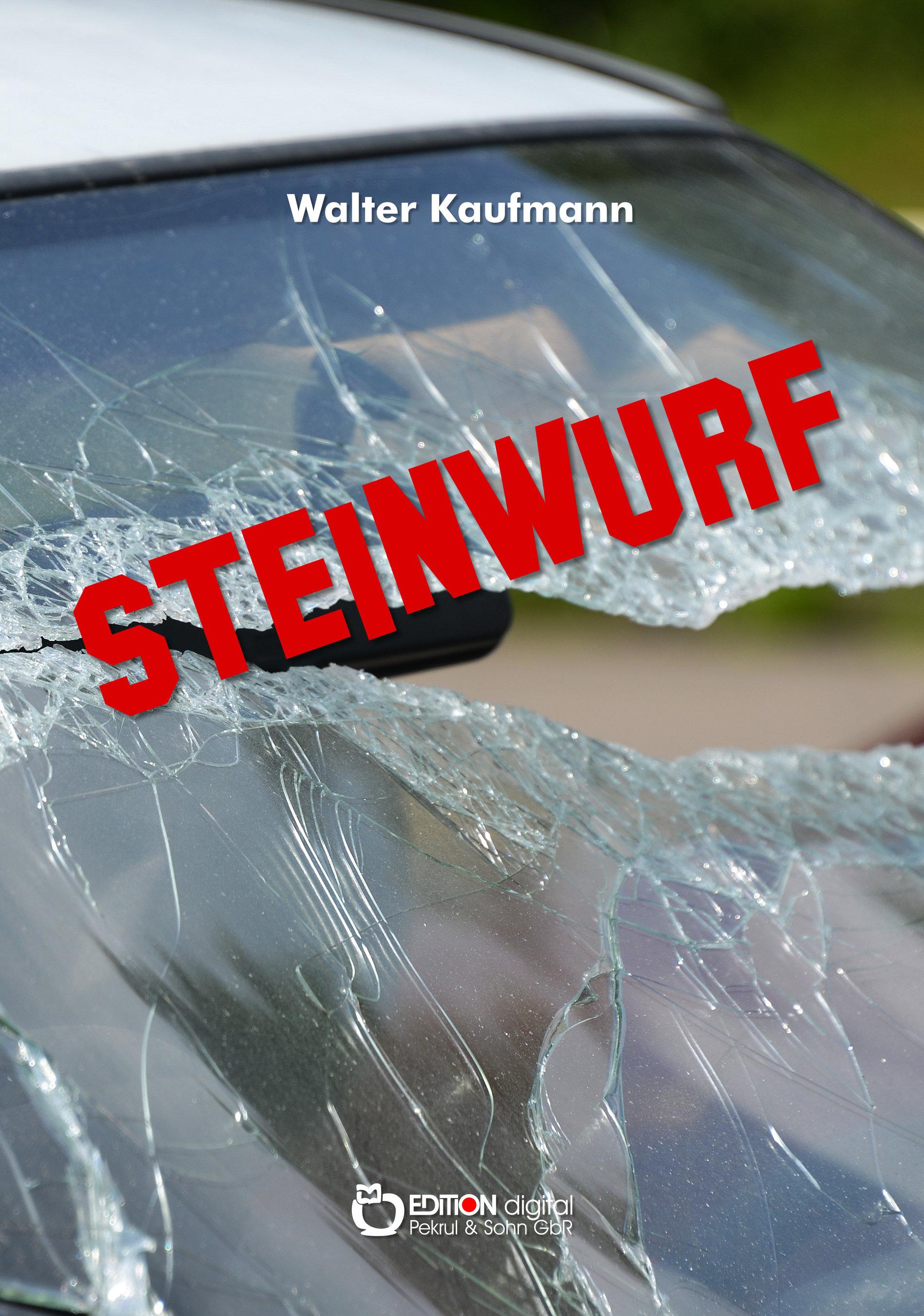Steinwurf. Über eine Liebe in Deutschland von Walter Kaufmann