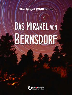Das Mirakel von Bernsdorf. Historischer Roman von Elke Nagel