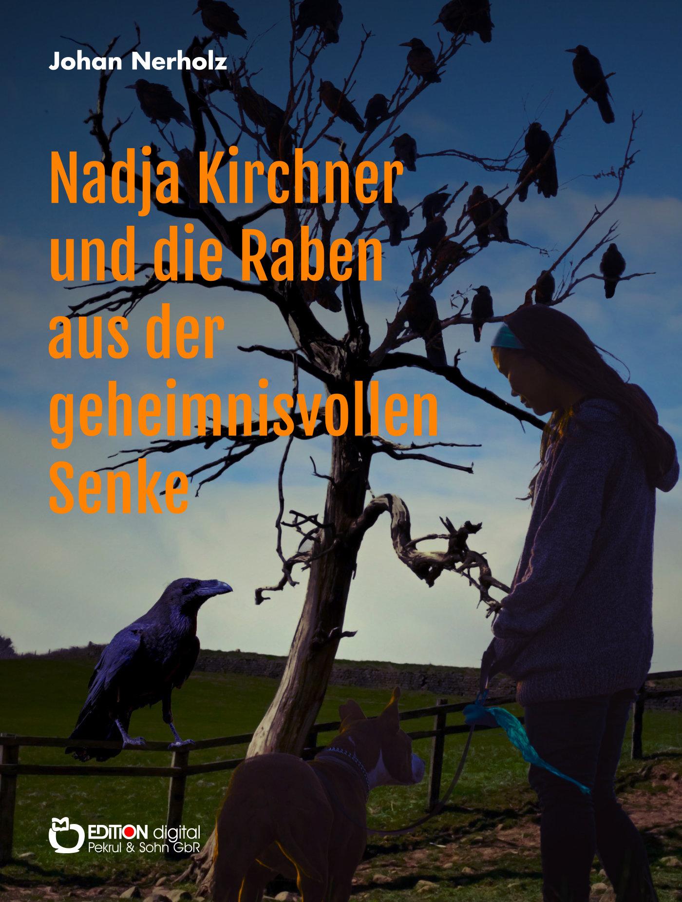 Nadja Kirchner und die Raben aus der geheimnisvollen Senke. Teil 1 der Nadja-Kirchner-Fantasy-Reihe von Johan Nerholz