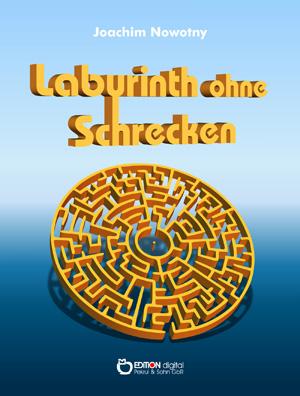 Labyrinth ohne Schrecken. Erzählungen von Joachim Nowotny