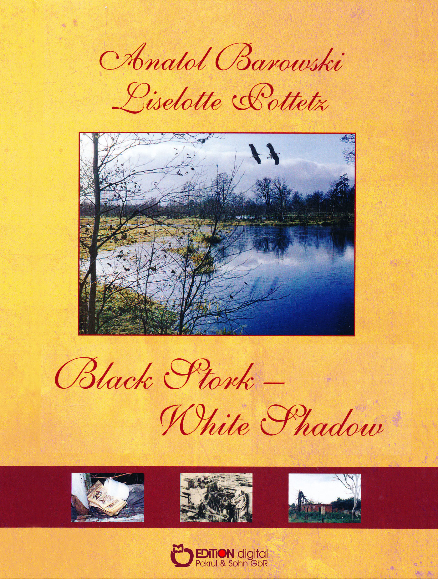 Black Stork - White Shadow von Liselotte Pottetz, Anatol Barowski
