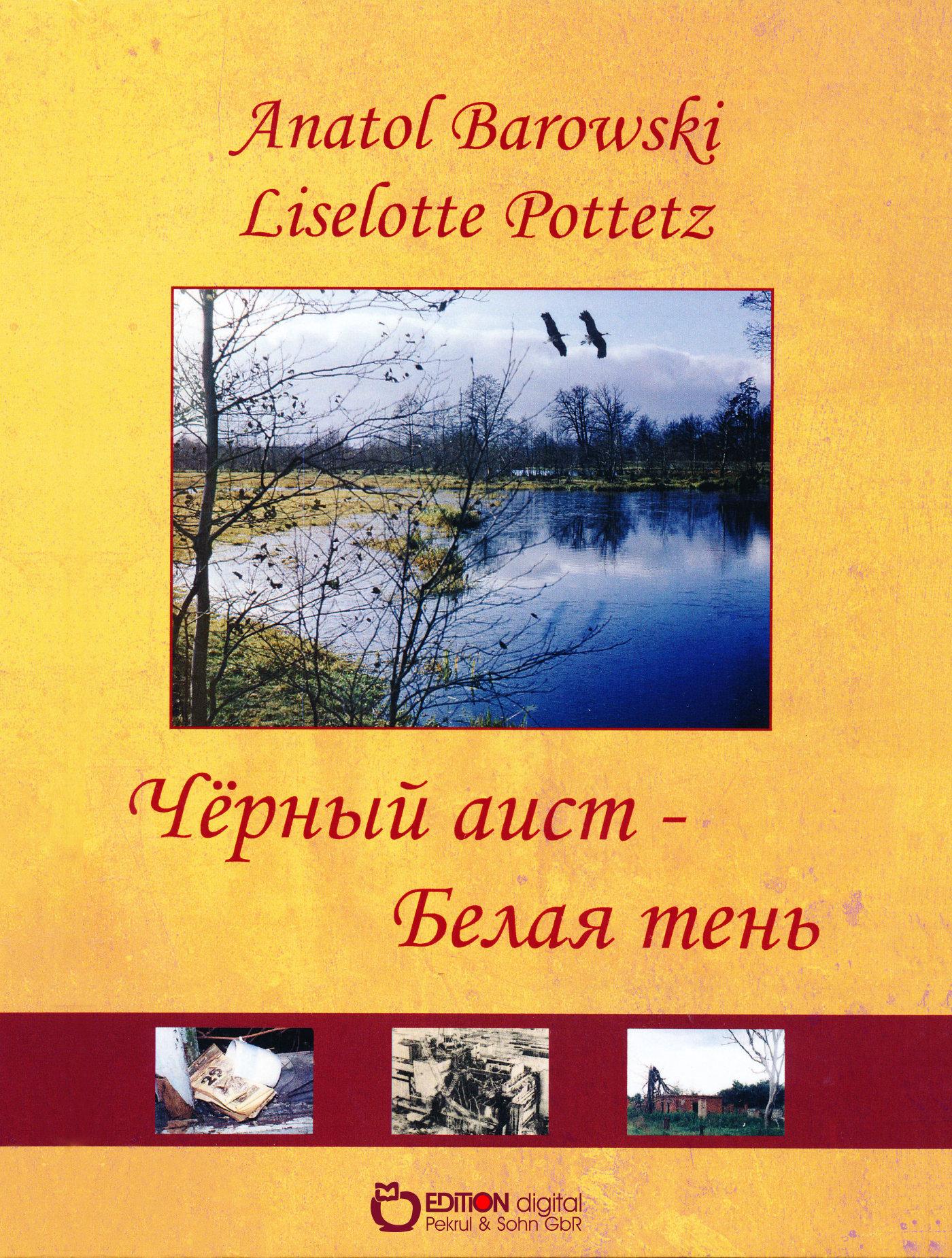 Чёрный аист von Liselotte Pottetz, Anatol Barowski