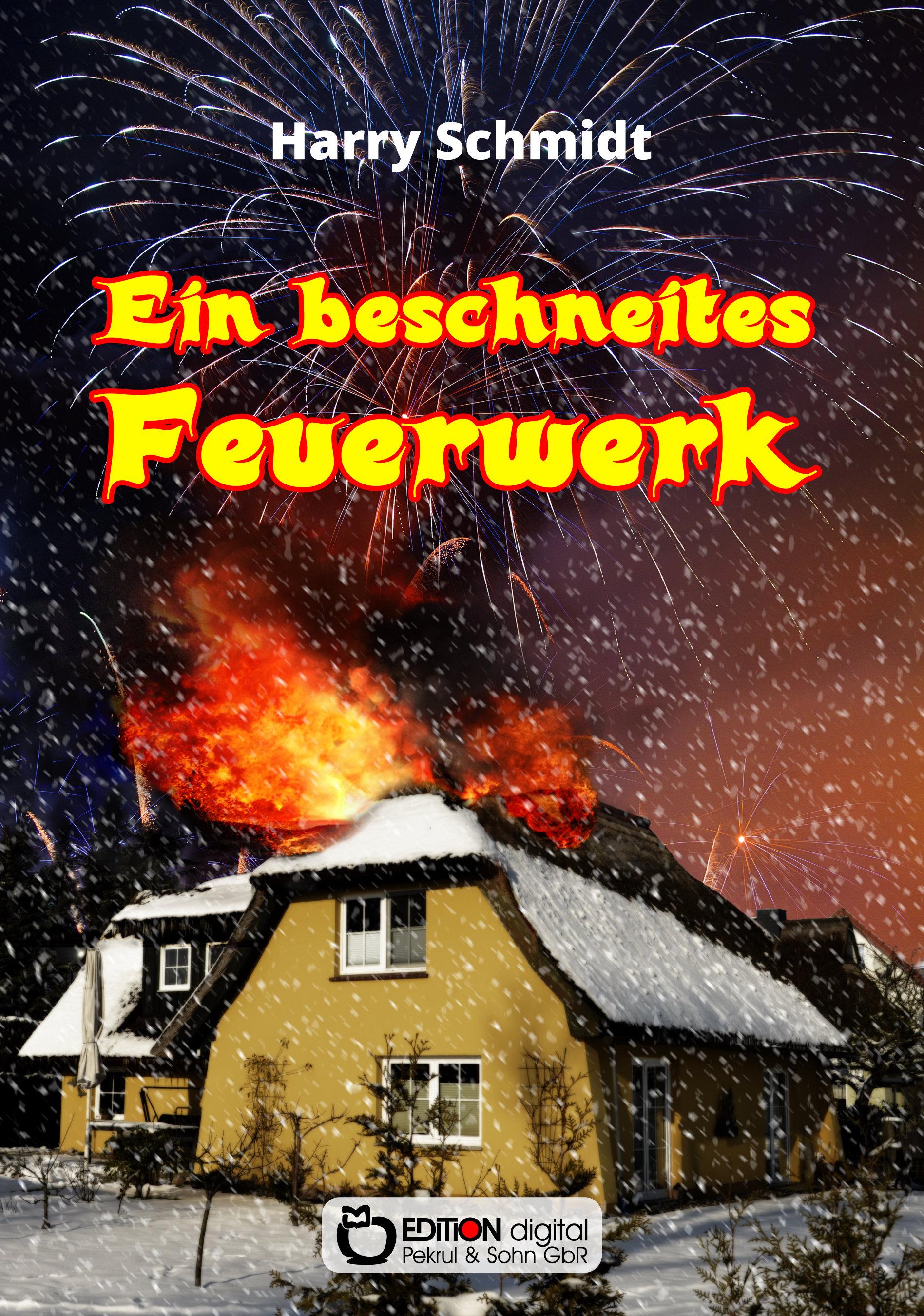 Ein beschneites Feuerwerk. Sinnsuche und Liebesleben der Ulrike B. in zwei Systemen von Harry Schmidt