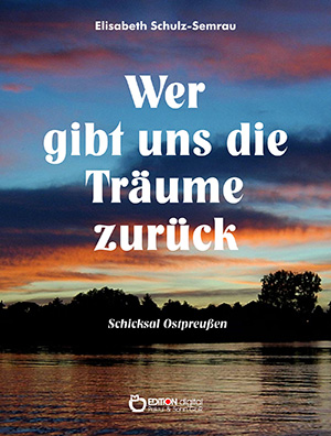 Wer gibt uns die Träume zurück von Elisabeth Schulz-Semrau