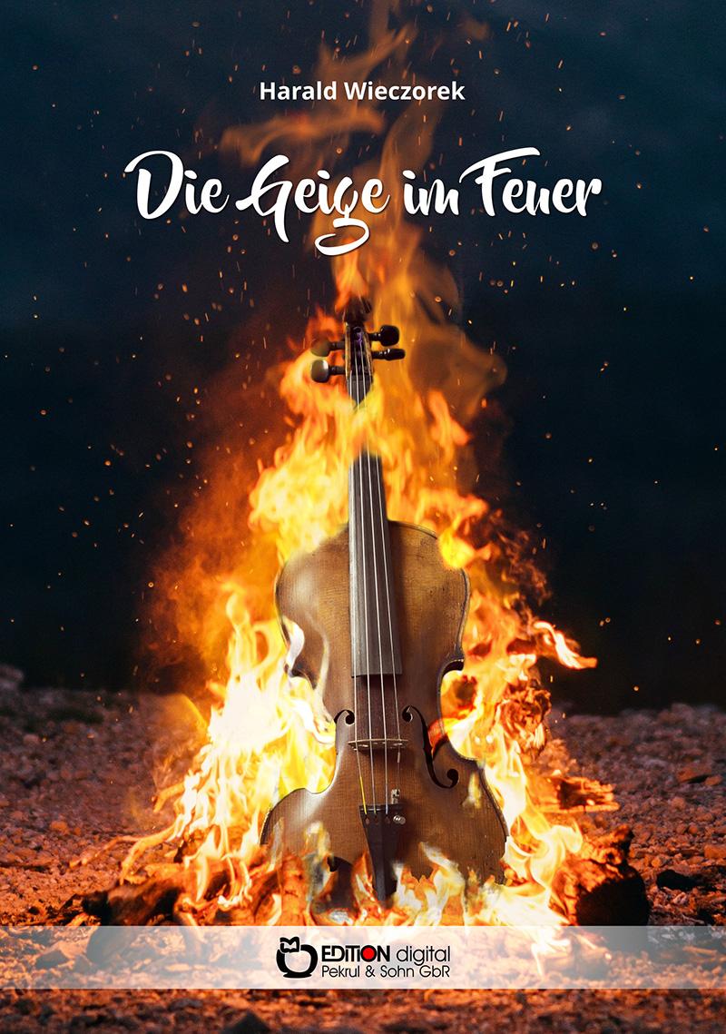 2020-06-18 Geige